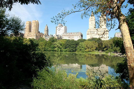 CENTRAL PARK - I cinque borough di New York City