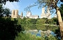 CENTRAL PARK. I cinque borough di New York City