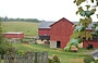 AMISH COUNTRY. Yoder's Amish Home: le stalle